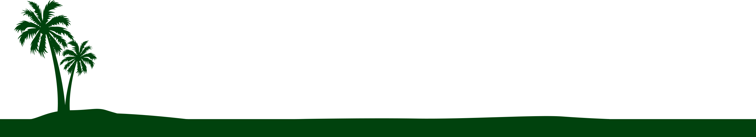 Bessey Creek Dental Care Palms Tree Background | Dr. Steven Kline, Palm City Dentist serving Palm City, Martin Downs, Stuart, Port St. Lucie, Port Salerno and Martin County.